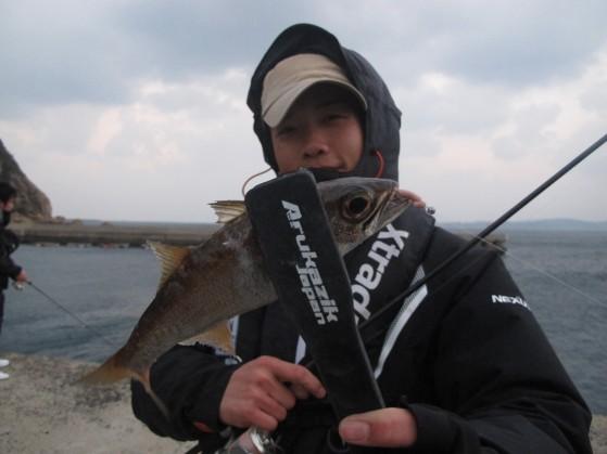 ムツの幼魚も良く釣れます。