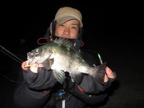 25.0cmまで釣れました。