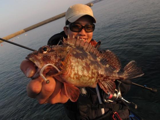 良型混じりの楽しい釣り
